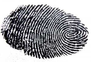 fingerprint facts