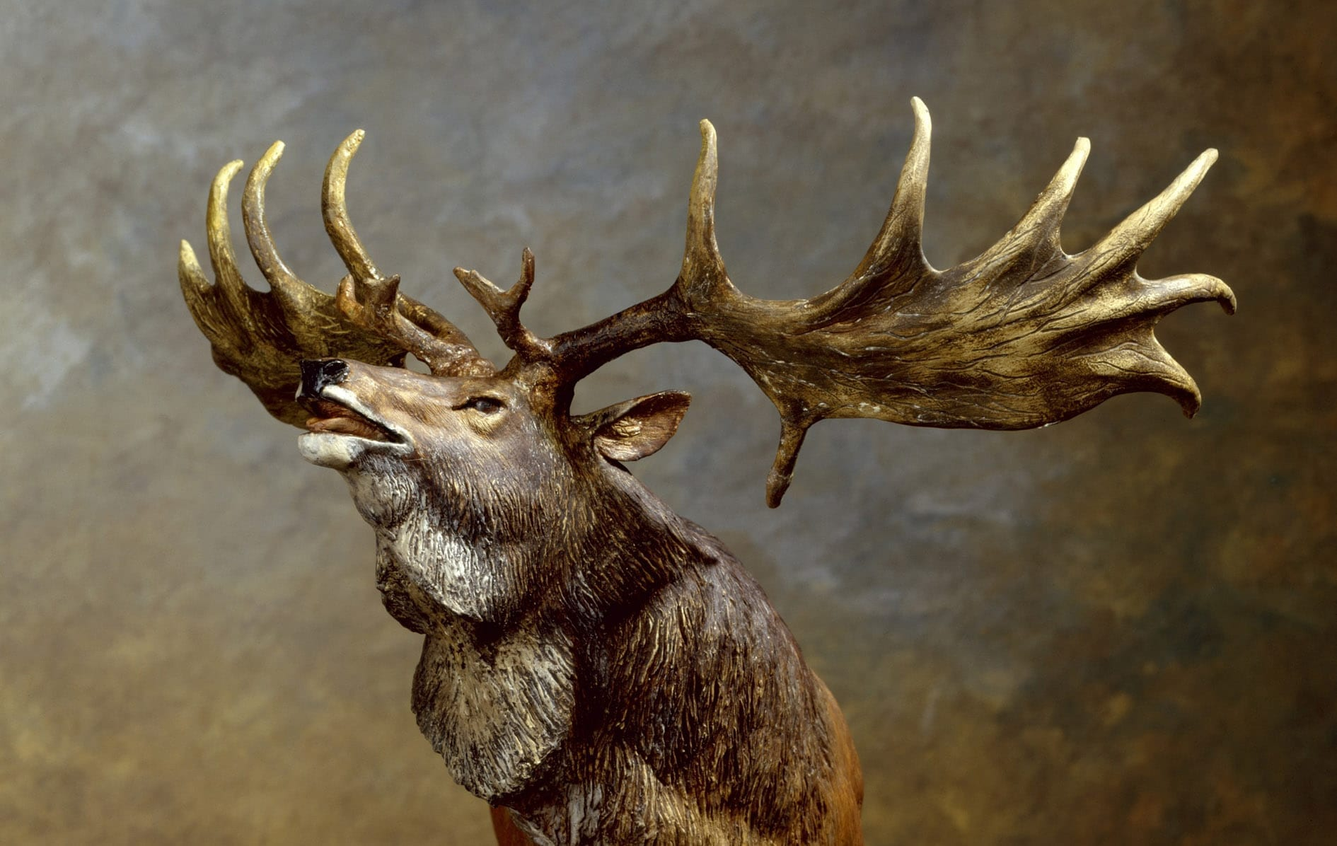irish elk facts