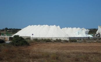 where does salt come from