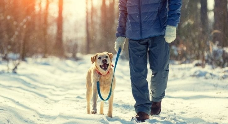 Tips To Get You Through the Winter Blues