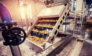 Common Industrial Food Processing Equipment