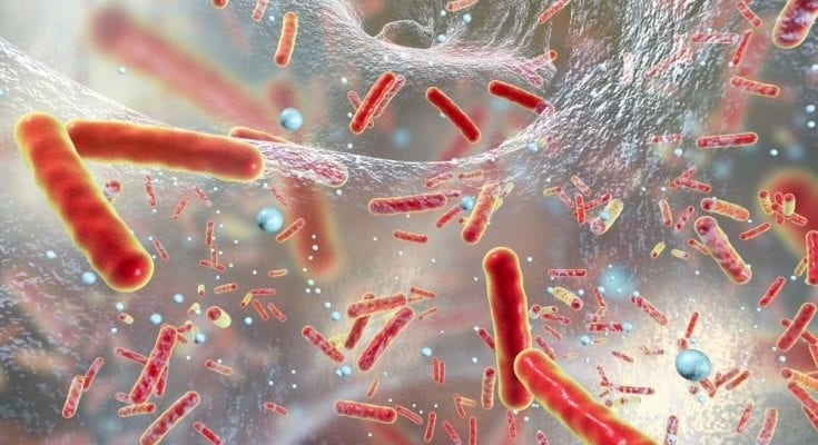 Where Does Biofilm Form in the Body?