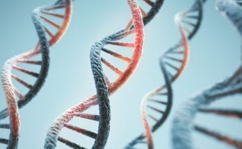 Weird But True Facts You Need To Know About DNA