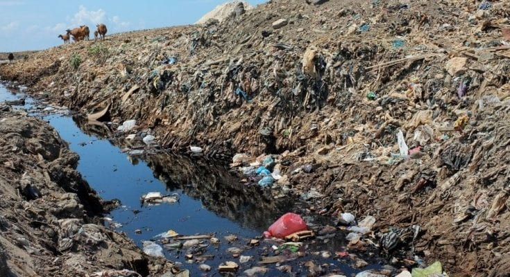 Top Environmental Problems in the United States