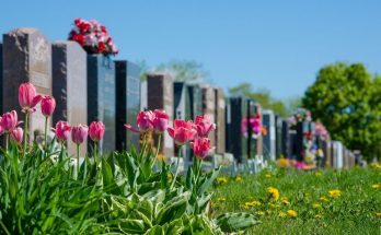 The Different Meanings of Common Gravestone Symbols