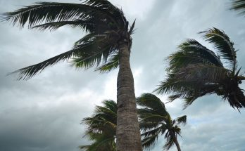 Different Kinds of Natural Disasters That Hit Florida
